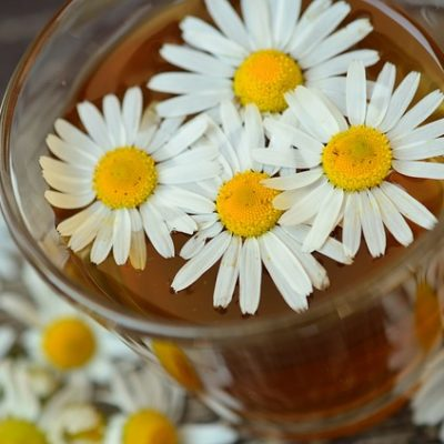 Chamomile For Cramping Tummies and More!